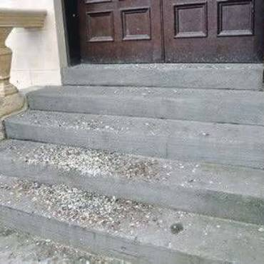 Harmful Effects of Pigeon Droppings
